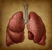 Типи дихання у людини